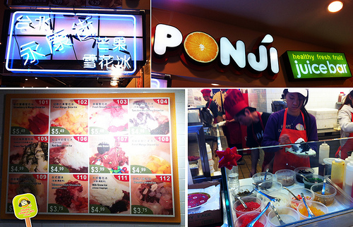 new world mall in flushing - ponji snow icy 1 copy