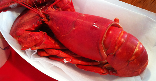 Red Hook Lobster Pound: Maine in Brooklyn (+recipes)