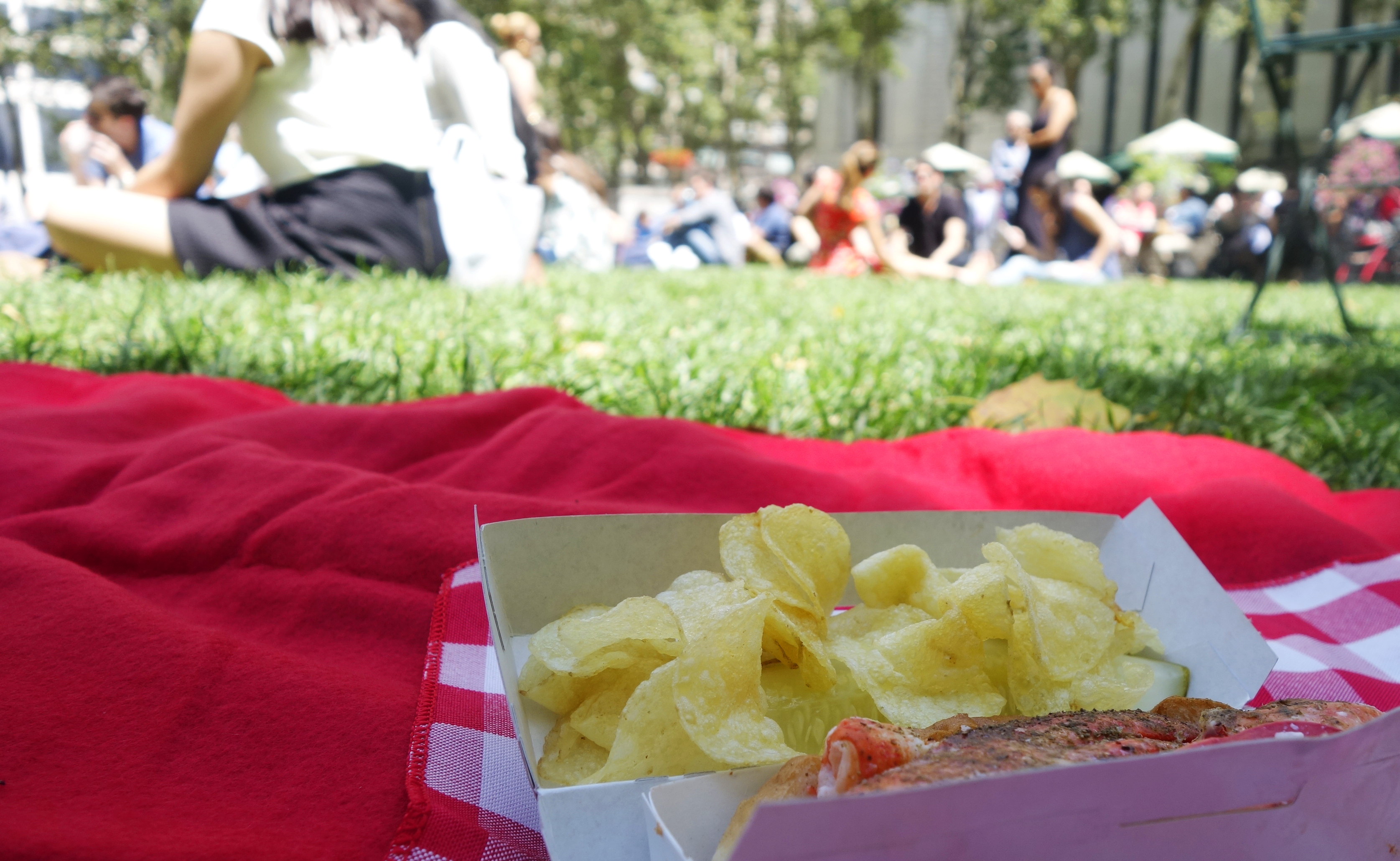 Seamless Picnic Day - 4
